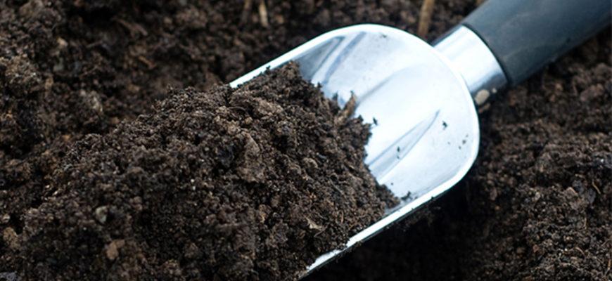 почвогрунт для рассады своими руками