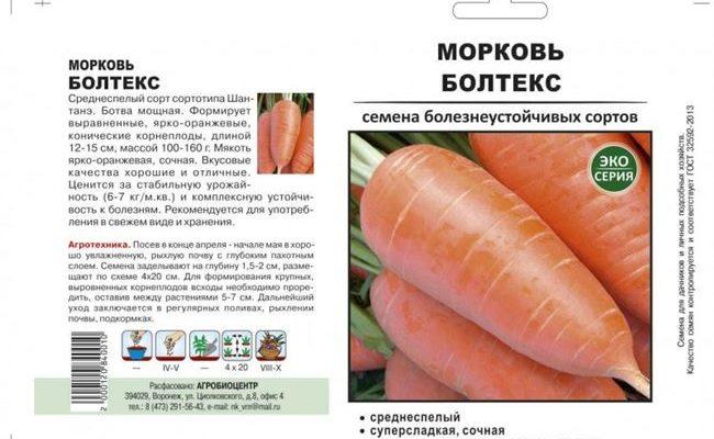 Особенности выращивания и ухода за морковью Болтекс