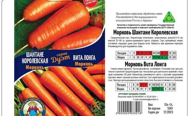 Морковь Вита Лонга — проверенный временем урожайный сорт