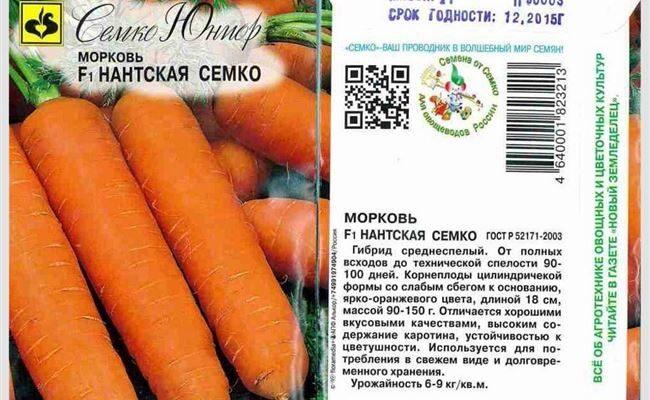 Описание сорта моркови Нантская
