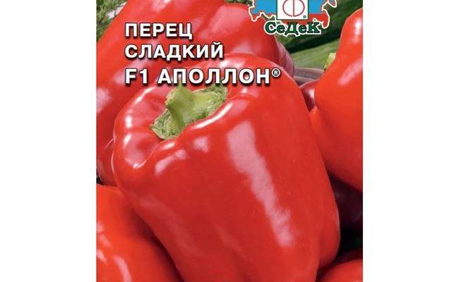 Болгарский перец Аполлон F1: описание, агротехника, реальные отзывы
