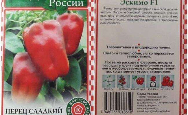 Любитель холодов из классической линейки сладких перцев — Эскимо F1: характеристика и описание сорта