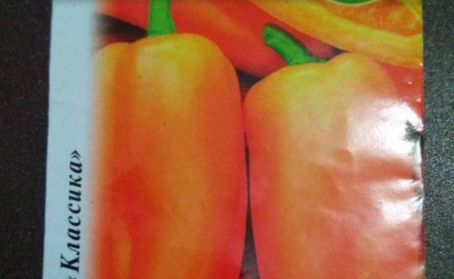 Перец сладкий Янтарь. Внешнее описание, плюсы, минусы, правила выращивания