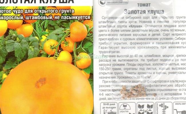 Линейка томатов Клуша обычная, Золотая и Супер для открытого грунта: описание, отзывы