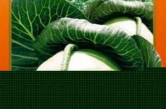 Капуста Нозоми — описание, агротехника и отзывы огородников