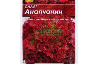 Анапчанин: описание сорта, выращивание, отзывы, фото