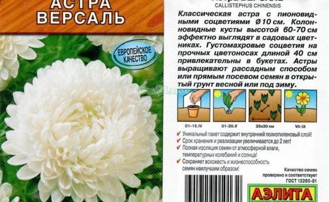 """Семена цветов Астра """"Версаль"""" пионовидная, О, 0,2 г"""