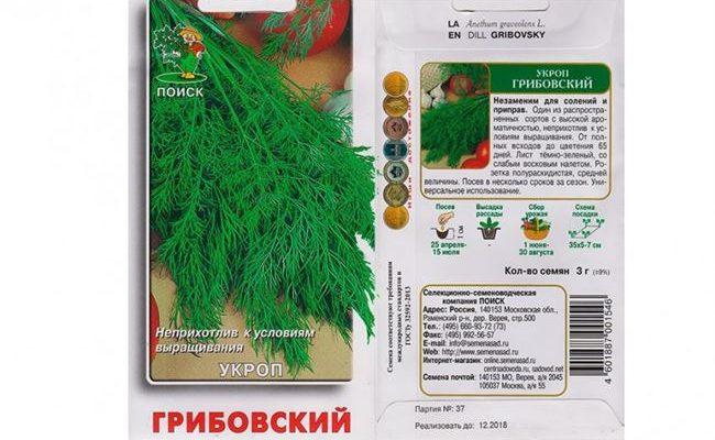 Обзор лучших сортов укропа: их описание, посадка и урожайность