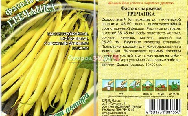 Гречанка - сорт растения Фасоль овощная