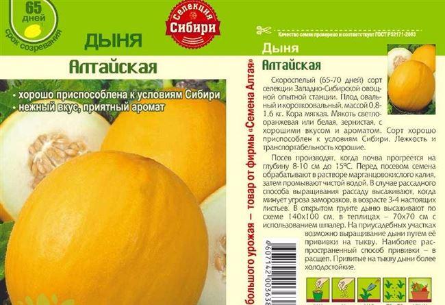 Описание сорта дыни Алтайская