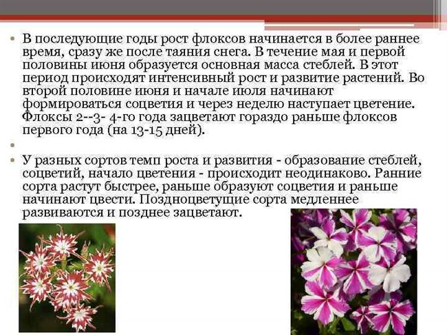 Формирование растений