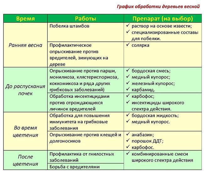 Этапы и правила процедуры