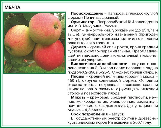 Особенности плодоношения и урожайность
