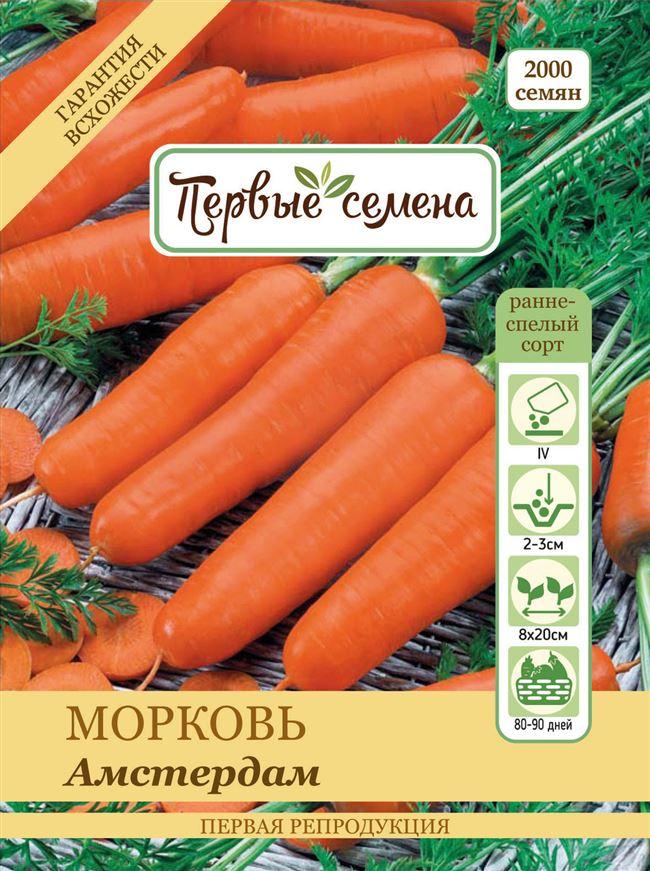 Отзывы о гибриде моркови Амстердамская