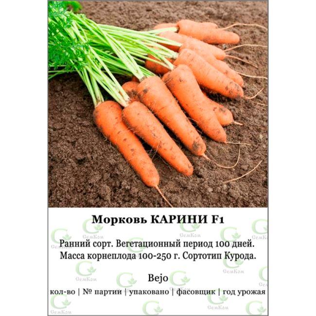 История моркови в древнейшие времена
