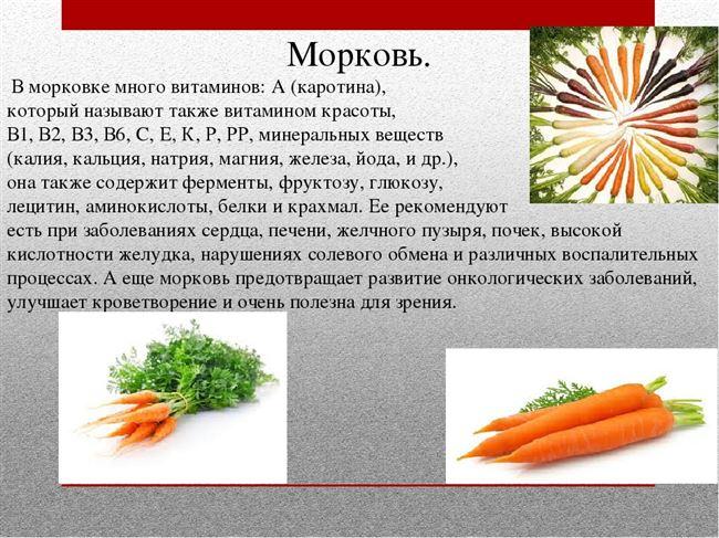 Химический состав, микроэлементы и витамины, полезные свойства