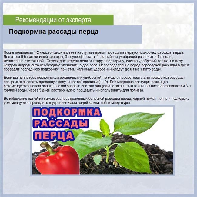 Подкормки и состав удобрений