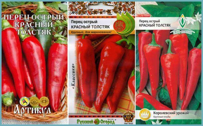 Описание перца Толстяк, отзывы, фото