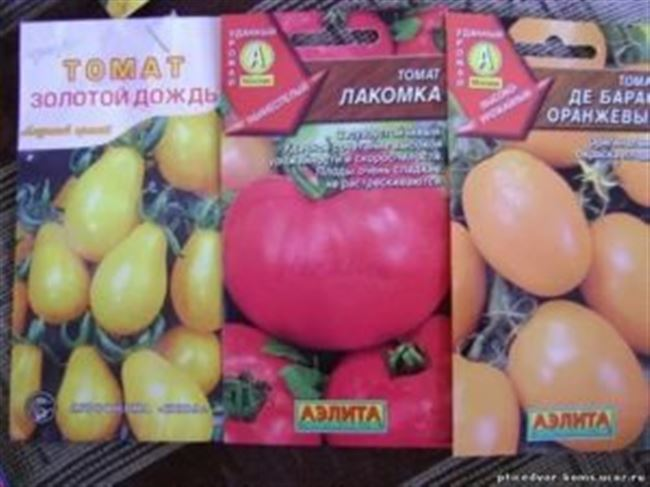 Отзывы о томатах сорта Лакомка