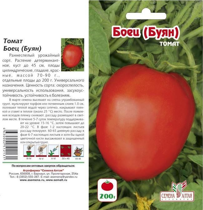 Почему огородники выбирают томат Буян, плюсы и минусы