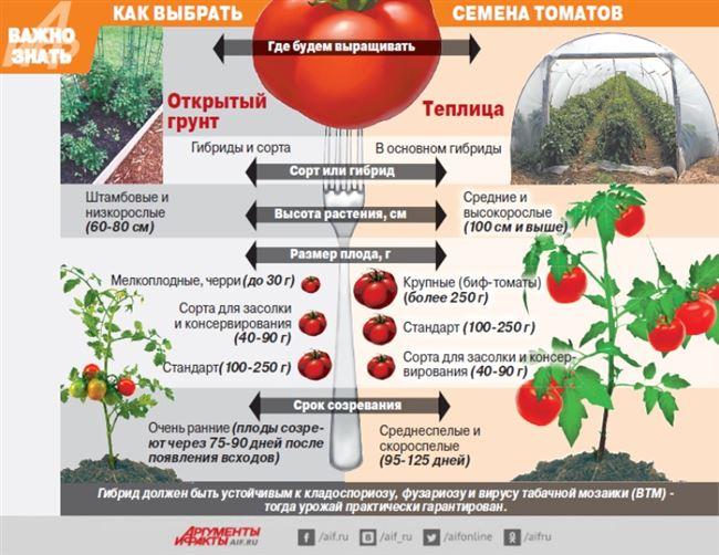 Советы по посеву и уходу за рассадой