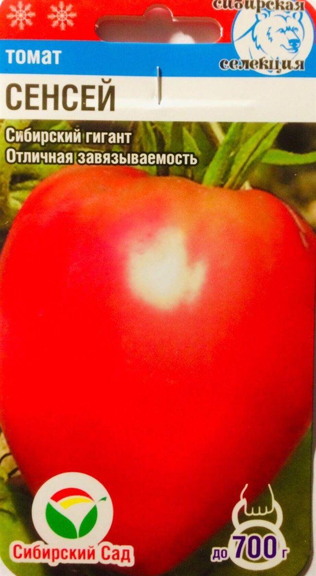 История выращивания томата Сенсей