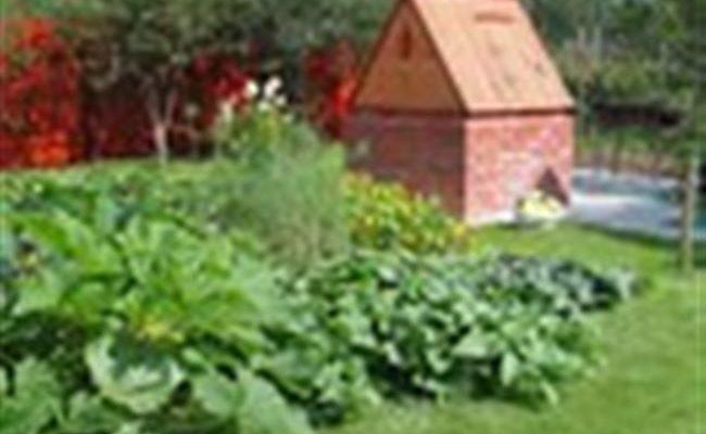 Дачный форум: дача, сад, огород, цветы.