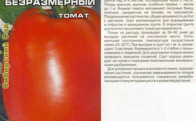 Достойный представитель среднеспелых — томат Очарование: описание сорта и характеристики