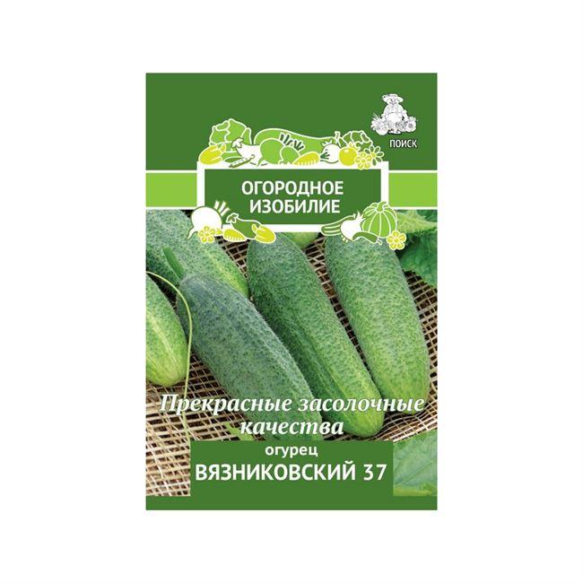 Характеристика плодов сорта Вязниковский 37