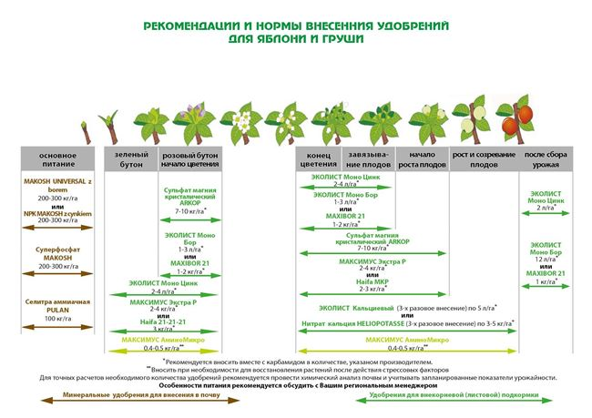 Классификация и виды удобрений