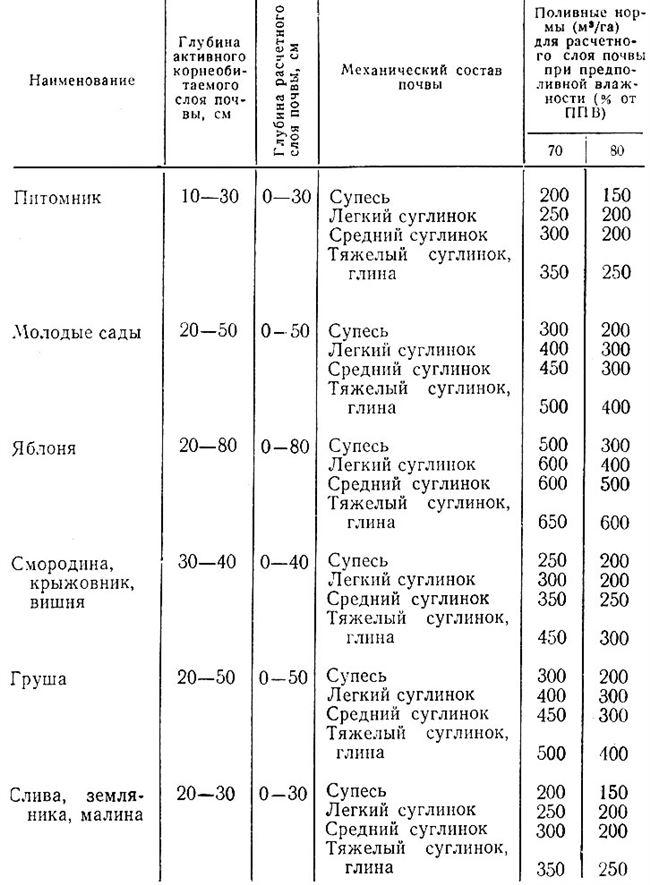 Оптимальная температура и состав воды для поливки