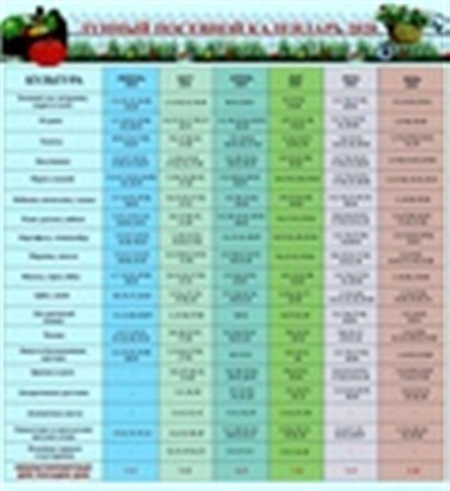 Посадка лобелии на рассаду в 2021 году: когда сеять, благоприятные дни, выращивание